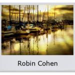 Robin Cohen