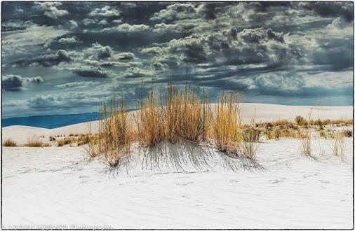 Landscape Logan Hubbard