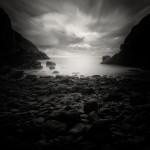 Andy Lee Pictures