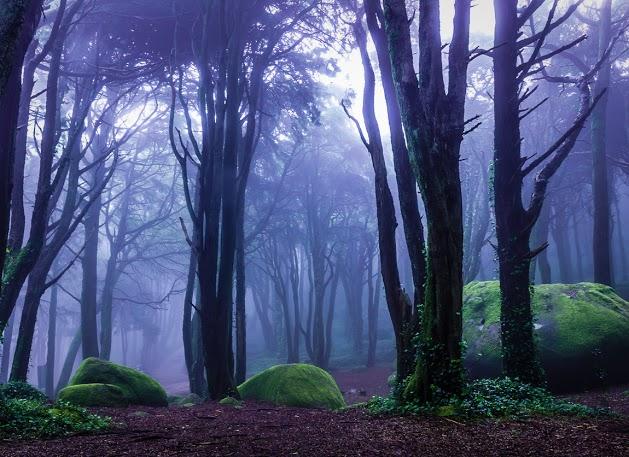 Fabs Fabian - Landscape